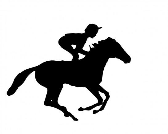 jockey-901292_1280