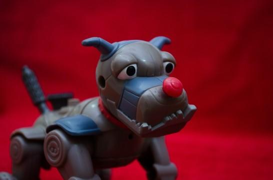 toy-390642_1280