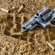 firearm-409252_640